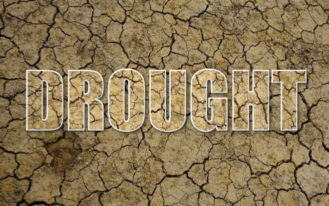 Image result for Drought