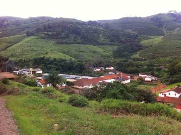 Brazil coffee beans growing region