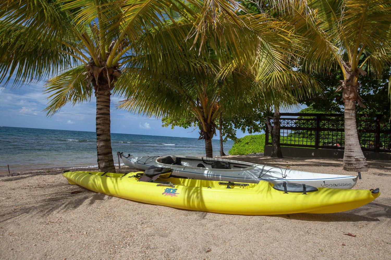 Kayaks 1301