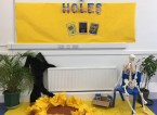 Holes Display
