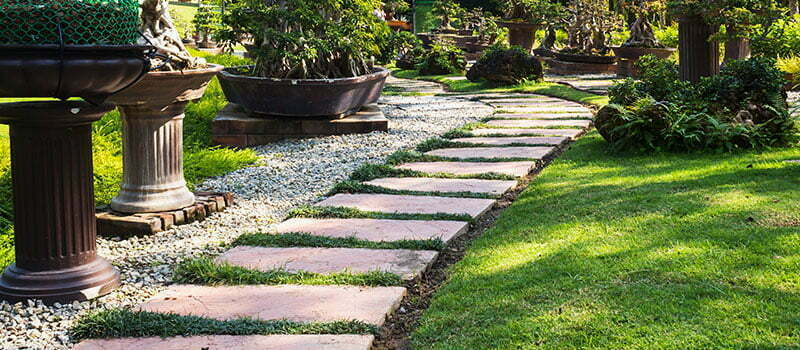 Top Landscaping Trends to Watch