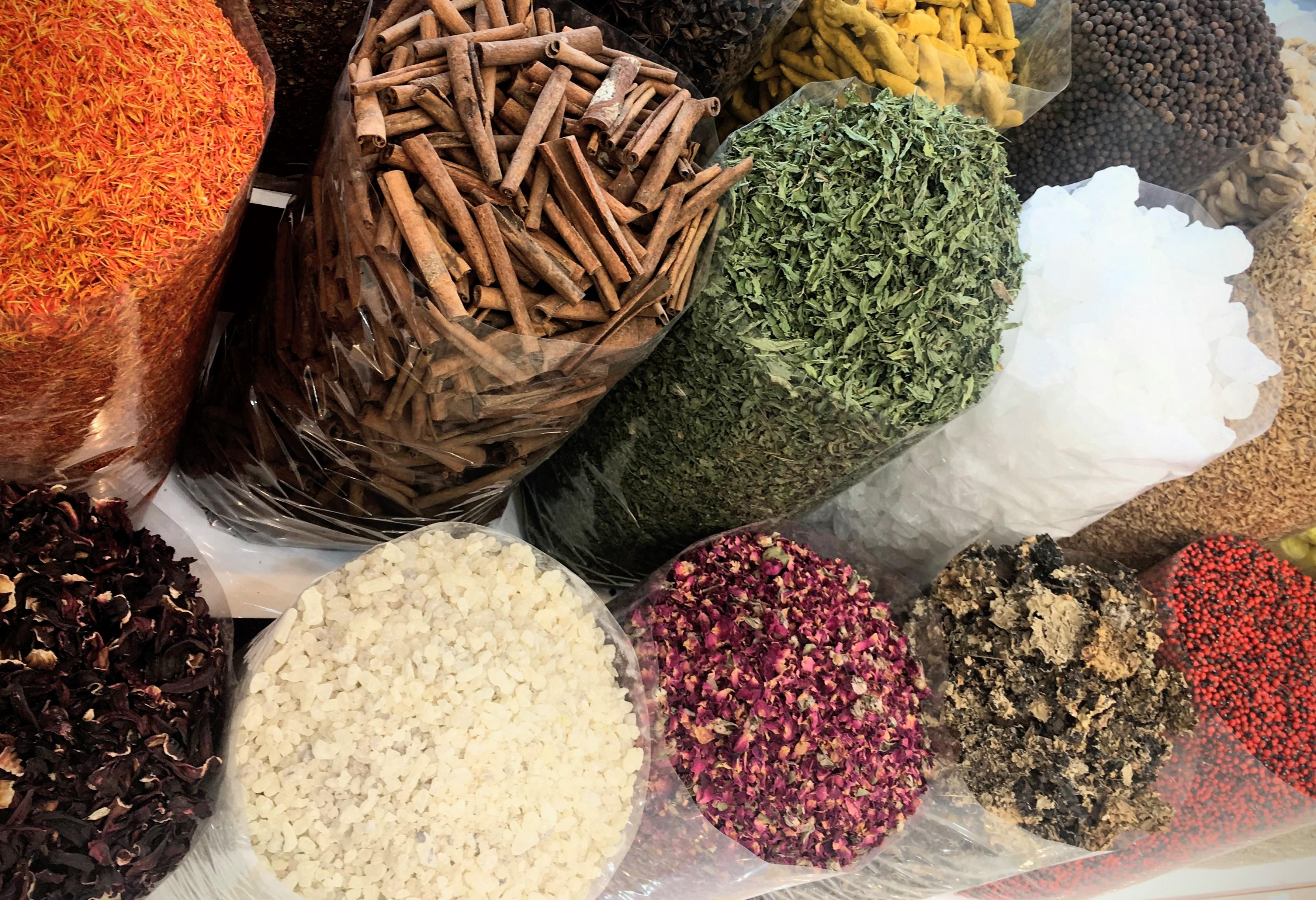 Food Trotter – Exploring Food around the Globe