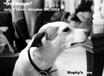 DOGS_289-300_-_1994-2004_Old_Murph