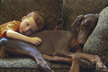 DOGS_410-Ava_and_Jake