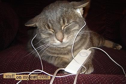 ipod-kitty