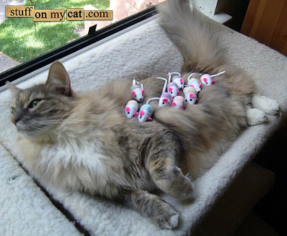 kitty-mousie-mama