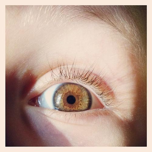 Eye explosion... Brownish blueish greyish. #eye #iris