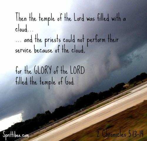 rain-glory