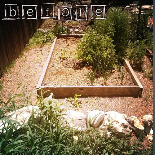 #smartyard BEFORE garden shot (yuck)