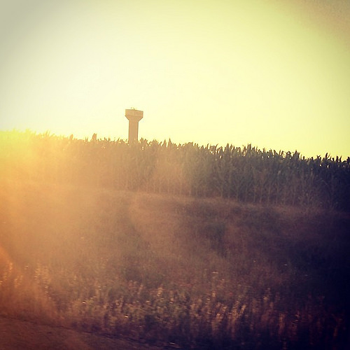 #Sunset Taylor, Tx #igtexas