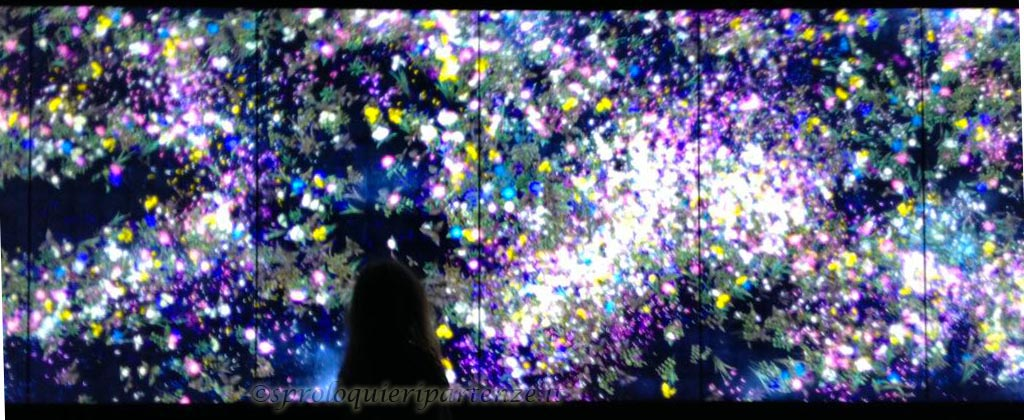Flowers and People-Dark, TEAMLAB | ENJOY Chiostro del Bramante
