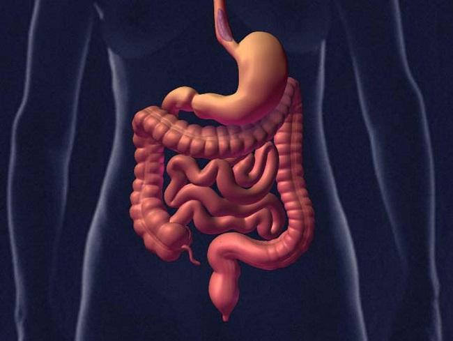 Diagnoza wirusów jelitowych