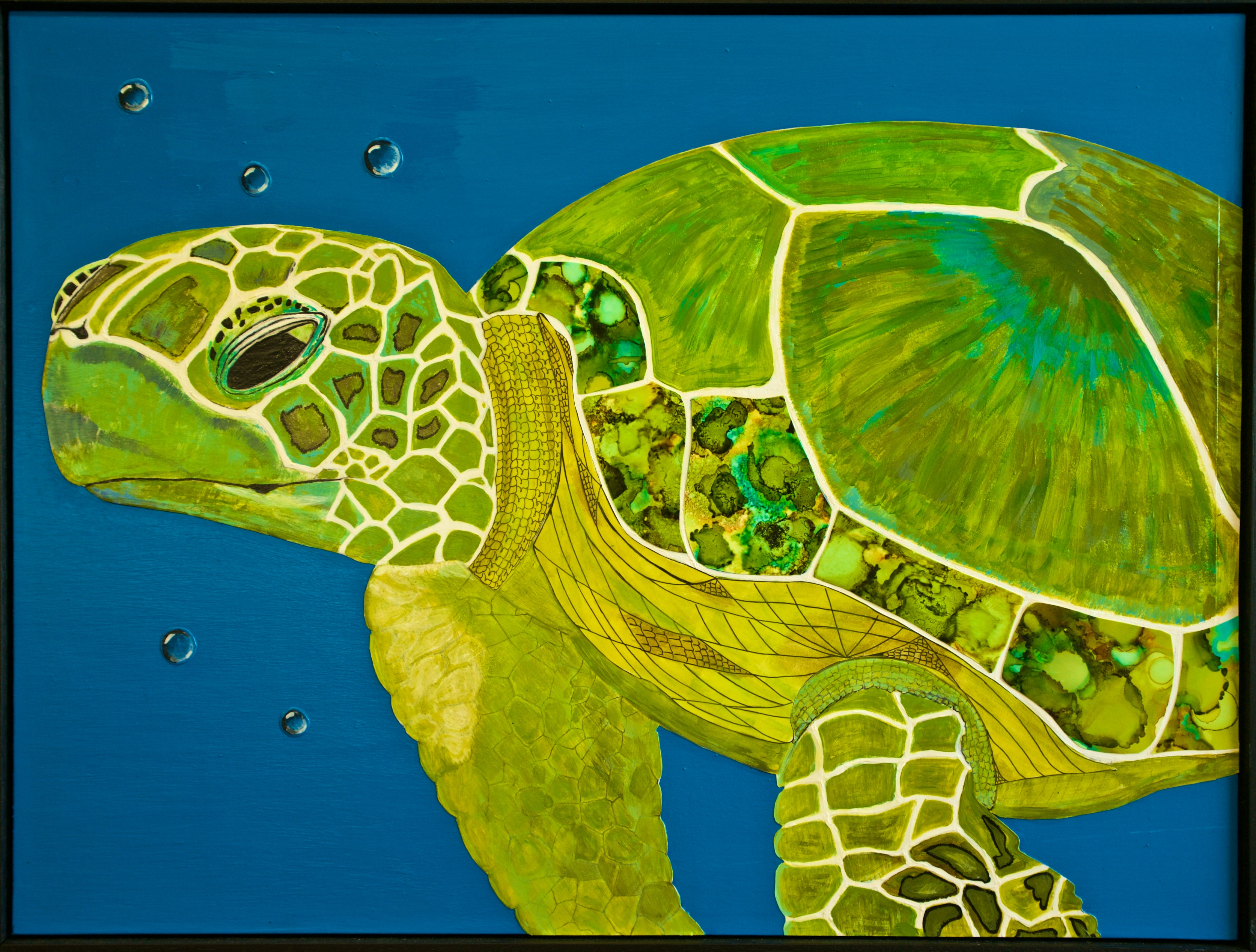 Ann Boyd - Sea Turtle