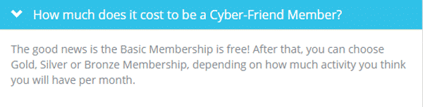 Get-paid-to-be-an-online-friend-RentCyberFriend-pricing