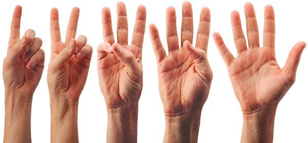 Sell-hand-pictures-show-gestures