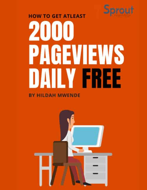2000-PAGEVIEWS-FROM-PINTEREST