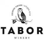 Tabor-logo-152x0-c-default