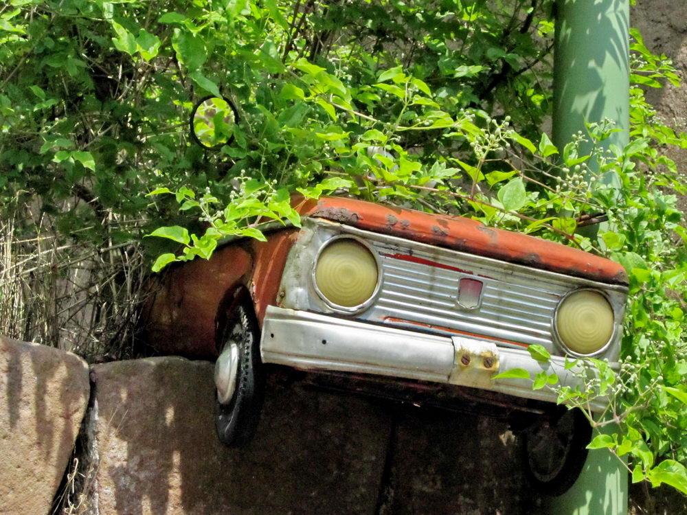 Kinder Auto im Busch
