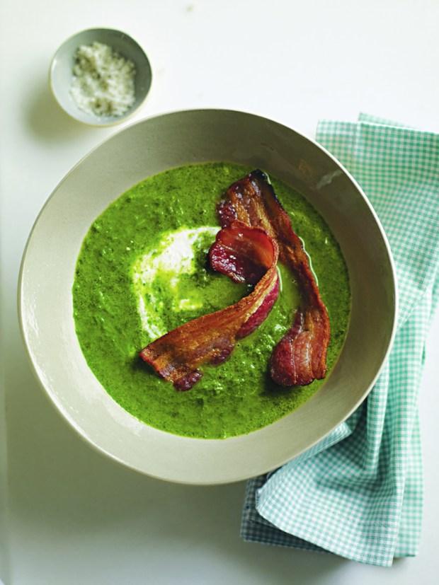 Soup, Glorious Soup