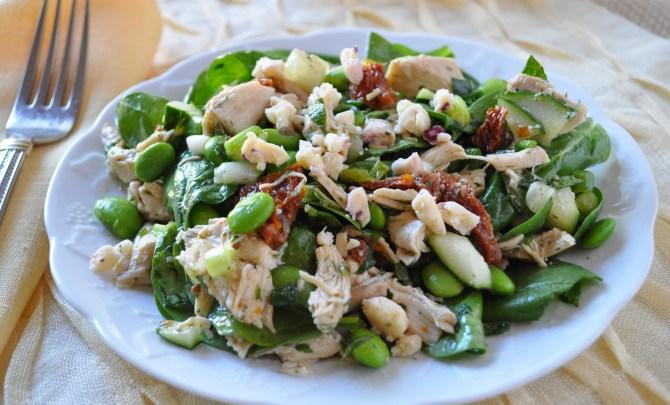 mediterranean__chicken_salad1
