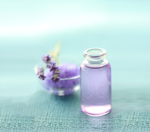 Essential-Oil-Lavender-Purple-Relaxation-Spry.jpg
