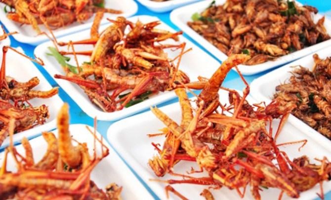 thinkstock-fried-grasshoppers