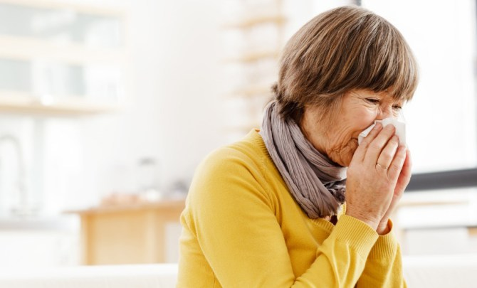 fall allergy solutions
