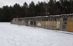Więcej o: Wyjazd do Chełmna