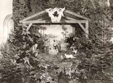 1948: Christmas Crib in the Church of the Immaculate Conception.