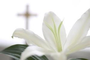 Easter-rotator-photo-300x200