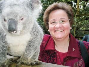 koala-cross-web