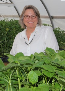 Lorrie Heber became the White Violet Center for Eco-Justice director during the spring of 2014.