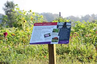 New walking tour signage to show up the flower garden at White Violet Center for Eco-Justice.