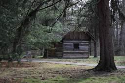 w-log-cabin