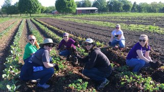 Scranton students were able to get crops planted during their week of service.