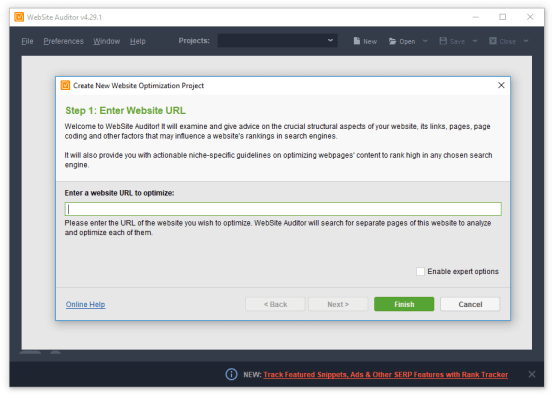WebSite Auditor 4.34.4 Crack