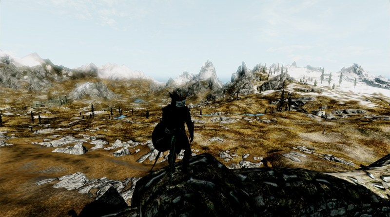 A (bad) example of DYNDOLOD