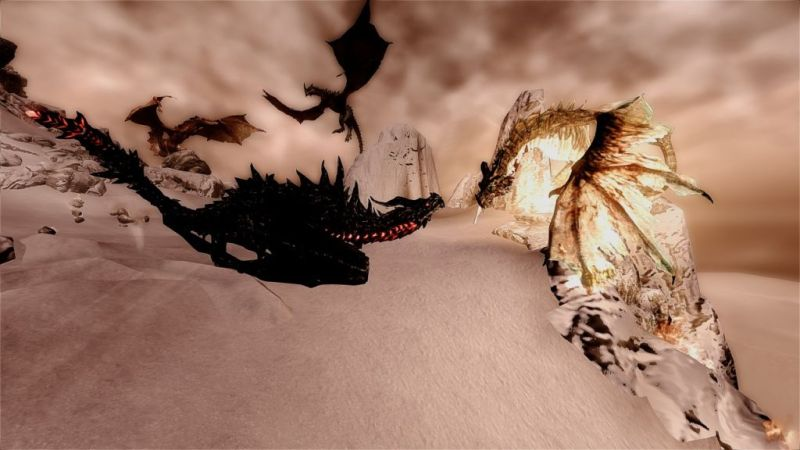 It certainly makes the Alduin VS you and Paarthurnax fight interesting though.