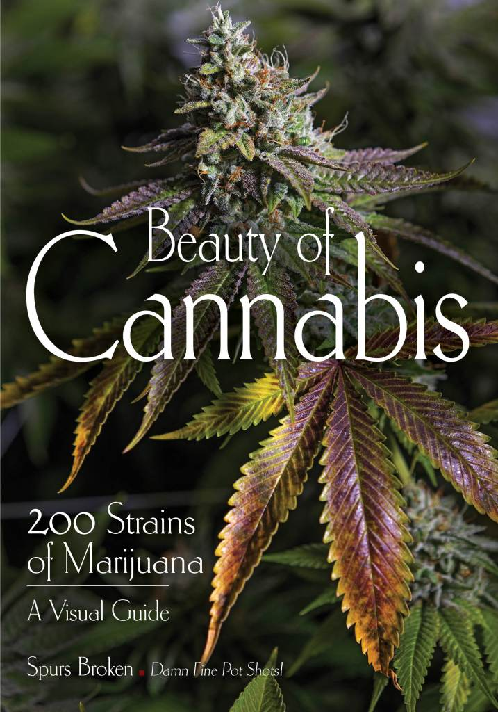 Beauty of Cannabis book cover, front