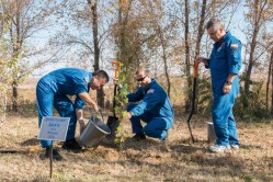 Detrás del Hotel de los Cosmonautas en Baikonur, Kazajstán, la tripulación cuartos de la Expedición 38/39, el Ingeniero de Vuelo Koichi Wakata de la Agencia de Exploración Aeroespacial de Japón (a la izquierda), ingeniero de vuelo Rick Mastracchio de la NASA (centro) y el Comandante de la Soyuz Mikhail Tyurin (derecha) Plantan un árbol en el nombre de Wakata el 1 de noviembre en una ceremonia tradicional pre-vuelo. El trío se prepara para su lanzamiento el 07 de noviembre, tiempo del cosmódromo kazajo de Baikonur a bordo de la nave espacial Soyuz TMA-11M para comenzar una misión de seis meses en la Estación Espacial Internacional. NASA / Victor Zelentsov