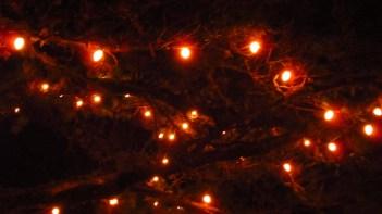 winter lights. Manzanita, Oregon