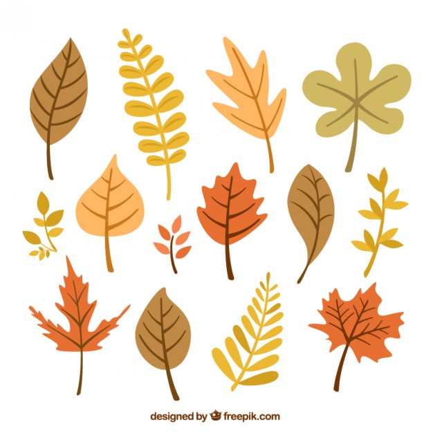 fall design elements
