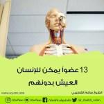 اعضاء يمكن للانسان العيش بدونها 13 عضو