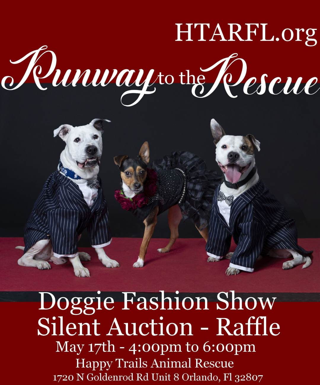 Runway to the Rescue Doggie Fashion Show