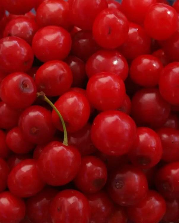 tart cherries night snack