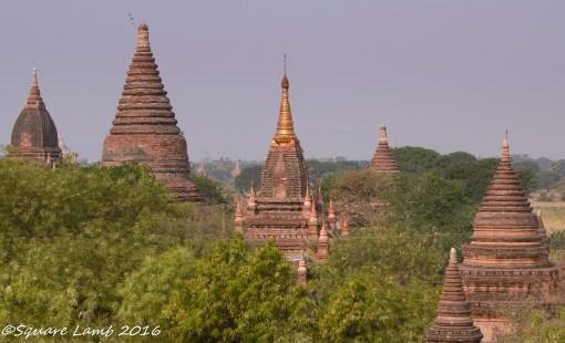 Bagan (1 of 1)