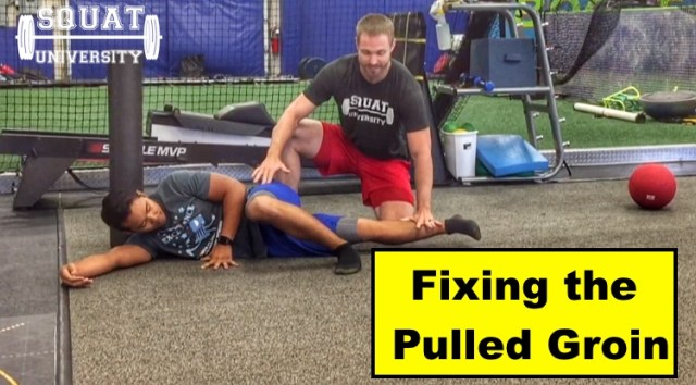 Fixing The Pulled Groin – Squat University