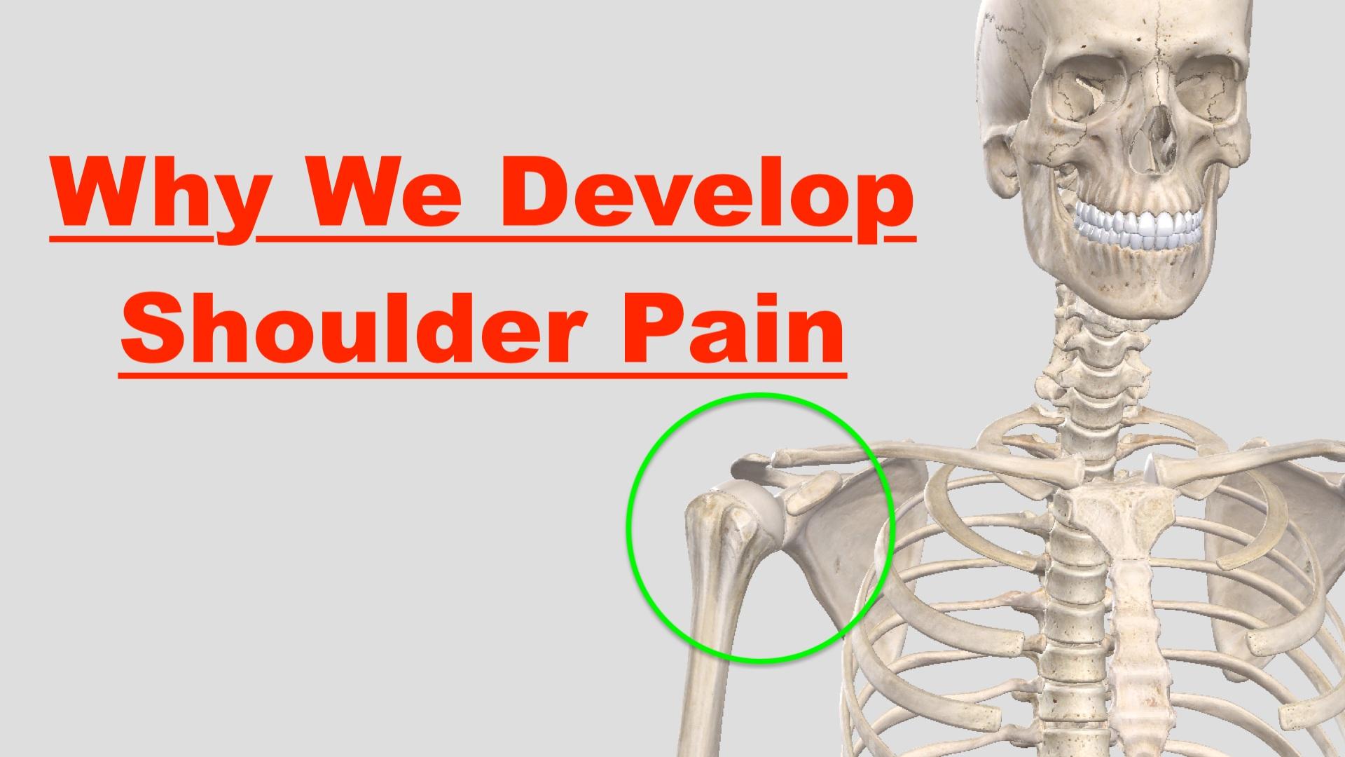 Why We Develop Shoulder Pain – Squat University