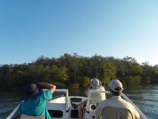 Lake Kariba and Hornbill Lodge. (3/6)