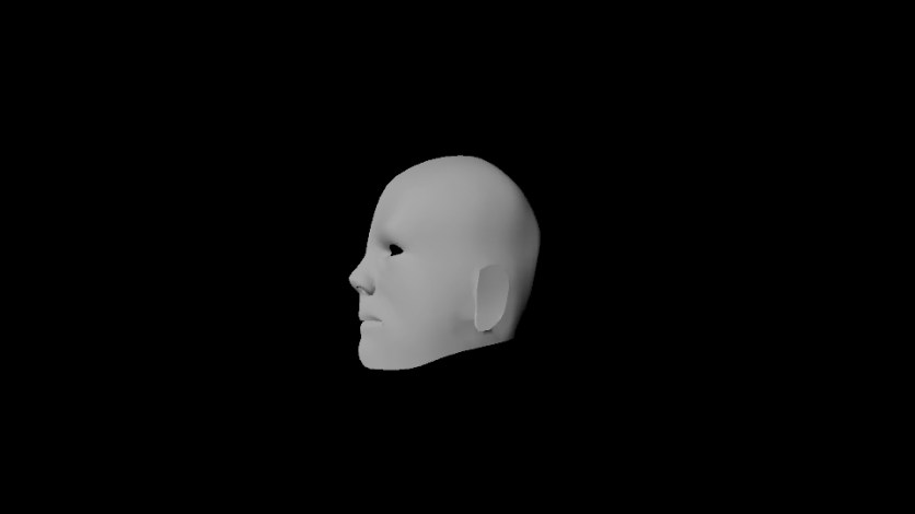 face model progress10